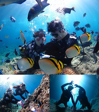 D코스 신비의 푸른 동굴 체험 다이빙